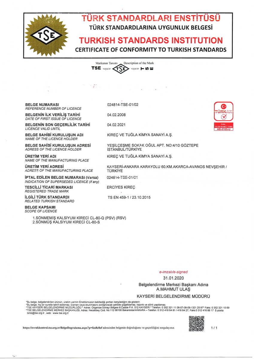 TS EN 459-1